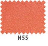 エクセーヌ700W N55