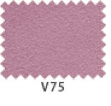 エクセーヌ700W V75
