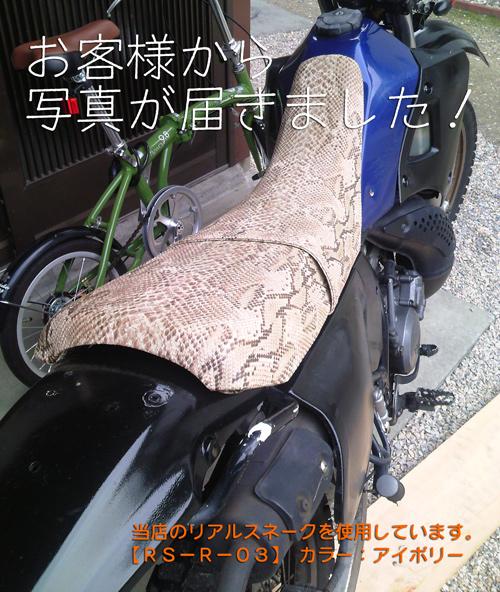 バイクシートヘビ柄