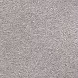 ラムースALS ライトグレー(薄灰色)