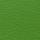 合皮 生地 シボ大 黄緑(ライトグリーン)